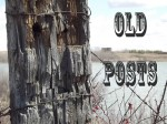 Old Posts